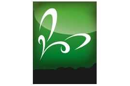 Logo catkin
